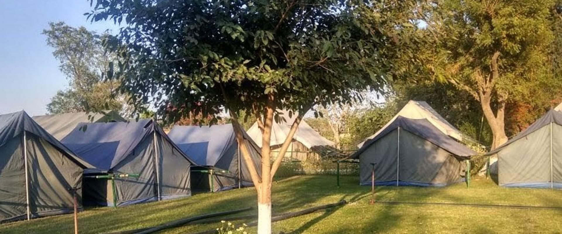 camp-morning
